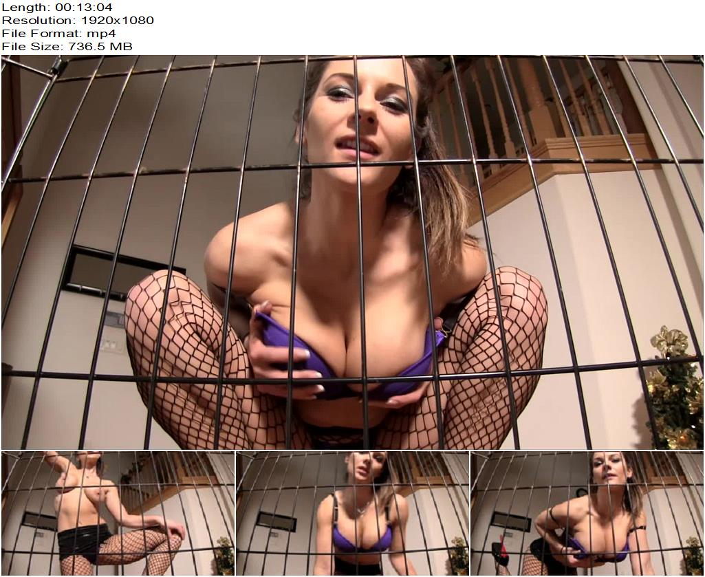 Mandy Flores – Caged for Mandy - Degradation, Pussy Licking