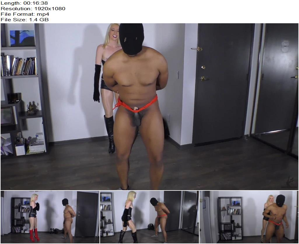 Worship The Wolfe – 165 Hard Kicks To The Balls By Goddess Wolfe - Female Domination, Ballbusting