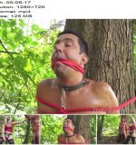 The English Mansion – Abused In The Woods – Part 3 -  Mistress Sidonia - Rope Bondage, Chastity Device