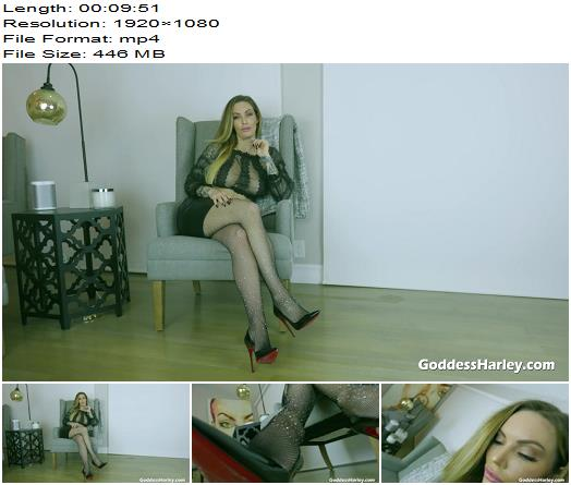 Amazon Goddess Harley - You're So Good At Edging - Instructions - Jerkoff Commands, Masturbation Encouragement