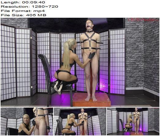 Cruel Mistresses - Cruel Handjob - Femdom Handjobs XI (720 HD) - Mistress Aryel - Handjob - Cumshot, Sperm