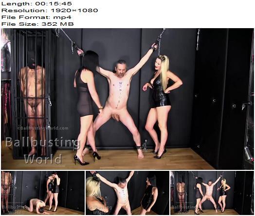 BallbustingWorld - Busting His Juicy Balls - Nikki Whiplash, Lady Bellatrix - Ballbusting - Mistress Nikki, Balls Busting