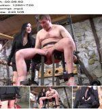 SADO LADIES Femdom Clips – Useless Cock Punishment -  Miss Jessica Wood  - Ballbusting, Female Domination