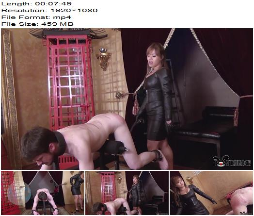 Torture Time – No Whimpers Allowed While I Destroy You With My Paddles -  Goddess Sydney  - Bondage, Female Domination