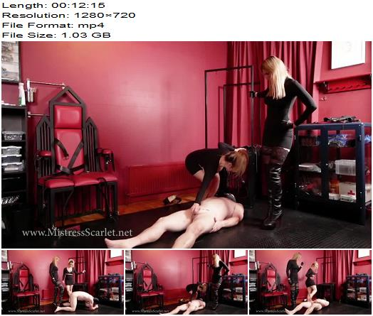 Mistress Scarlet - Kiss The Shoes That Kick Your Balls (720 HD) - Ballbusting - Double Domination, Dual Domination