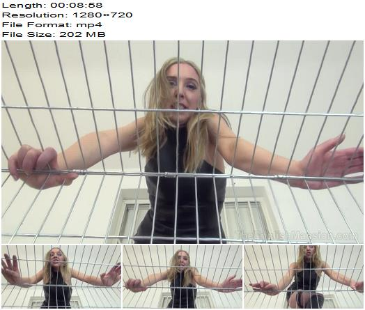 Mistress Sidonia in video 'Caged Clean Up Duties' of 'The English Mansion' studio  - Female Domination 2020, Findom