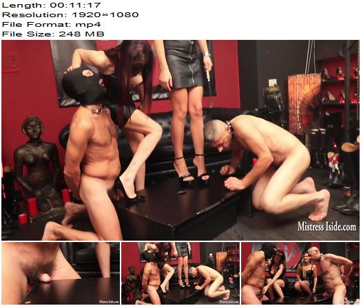 Mistress Iside  Micro Penis Destruction  CBT preview
