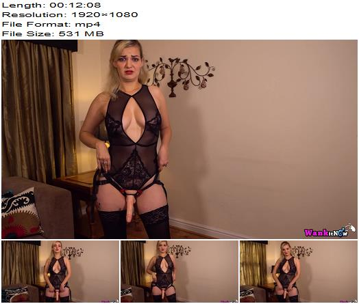 WankItNow  Dolly  My Little Bitch  Instructions preview
