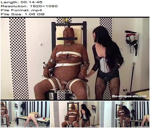Amator  Lady Lara  Missbraucht Part 3  3  CBT preview