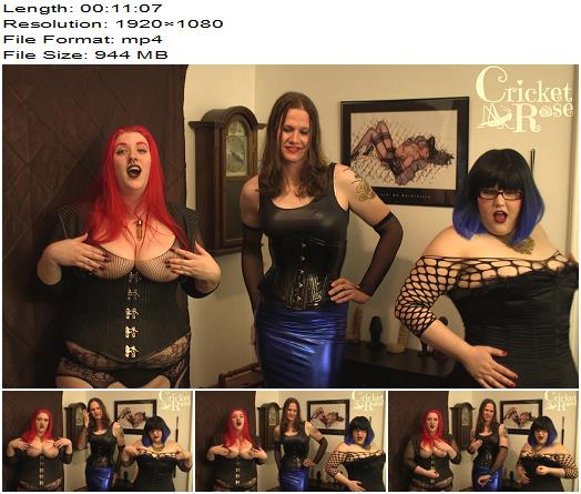 Cricket Rose Miss Fiona and Sadie Synn  JOI Three Dommes Control Your Cock preview