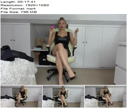 Dommelia  New Sissy Secretary  Mesmerize preview