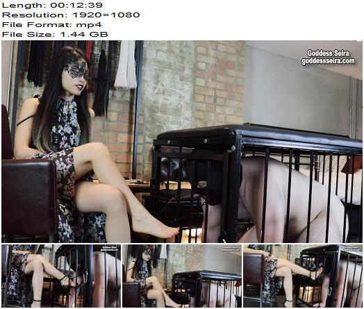 Goddess Seira  Worshipping My Feet In A Cage 1080 HD  Foot Worship preview
