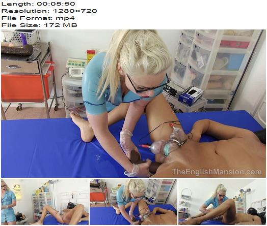 The English Mansion  Mistress Inka  Insertion Perversion  Part 1 preview