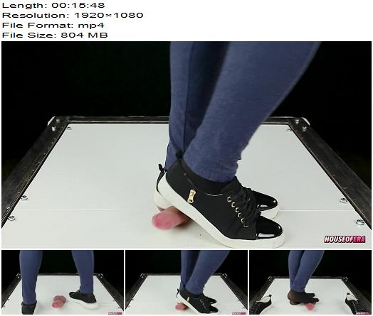 Your ock in Cockbox Trampling by Sneakers in Dance CBT POV of House of Era studio preview