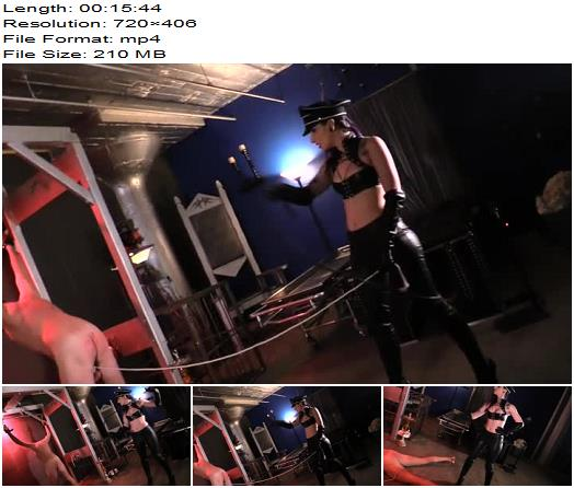 Cybill Troy starring in video Whip You while Youre Down preview