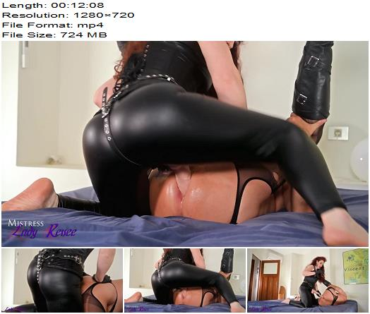 Mistress Lady Renee  Leather hooded gimp gets fucked preview