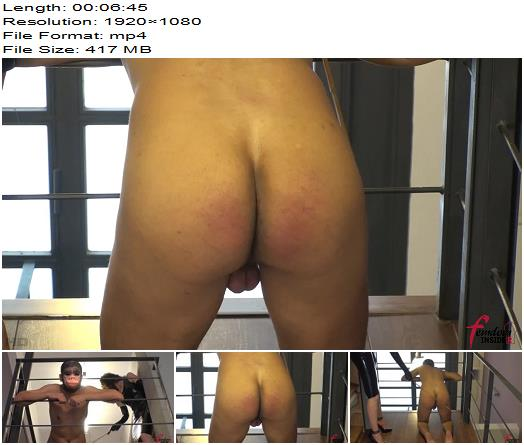 Femdom Insider  Lady Mary  Caning my Pitiful Primate  Femdom preview