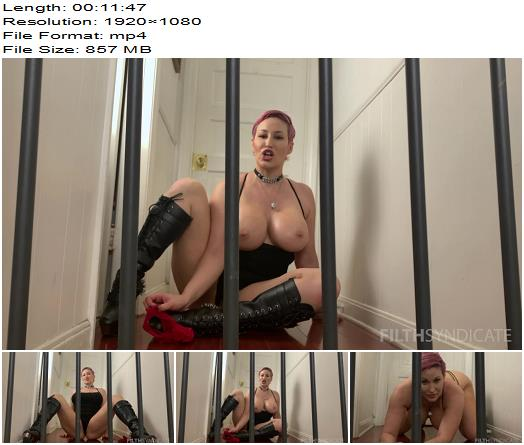 Filthy Femdom  KINKY JOI  Caged Houseboy  Masturbation Instruction preview