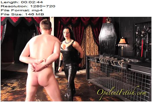 Goddess Cheyenne  Opulent Fetish  He Goes Down  Ball Abuse preview
