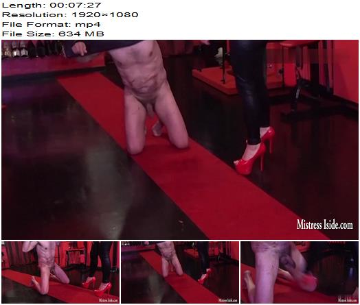 Mistress Iside  Ballbusting Solution  Femdom preview