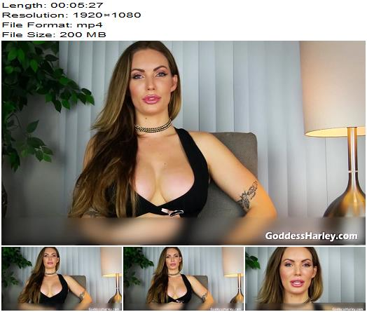 AMAZON Goddess Harley  Marking The Loser  Femdom Pov preview