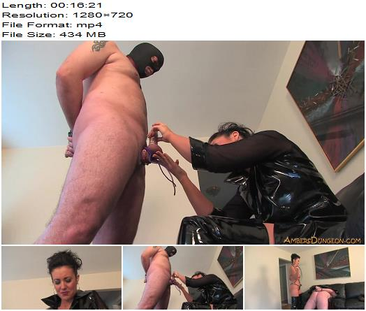 Ambers Dungeon  Mistress Haley  Hard For Haley  Femdom preview