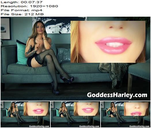 AMAZON Goddess Harley  Eat My Superior Stuff  Human Toilet preview
