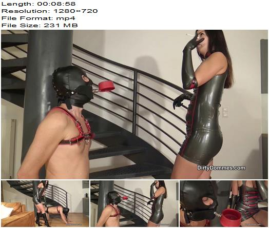 Dirty Dommes  Ashtray slave for Lady Iris preview