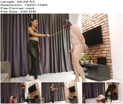 MahoganyQen  White Sneakers and Socks Ballbusting preview