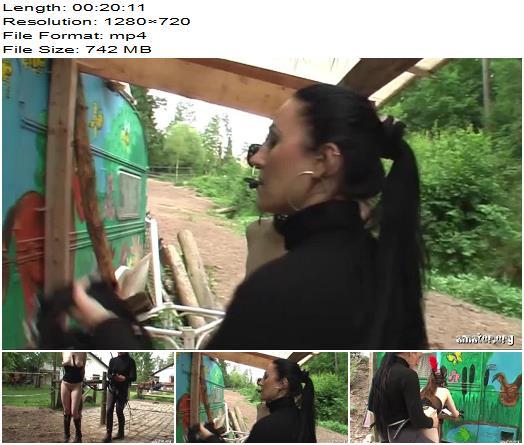 Amator  Pony Girl   Lady Bijou Kate preview