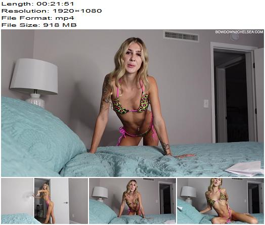 Princess Chelsea  My owned amp tied up chastity cuck finub  Blackmail  Findom preview